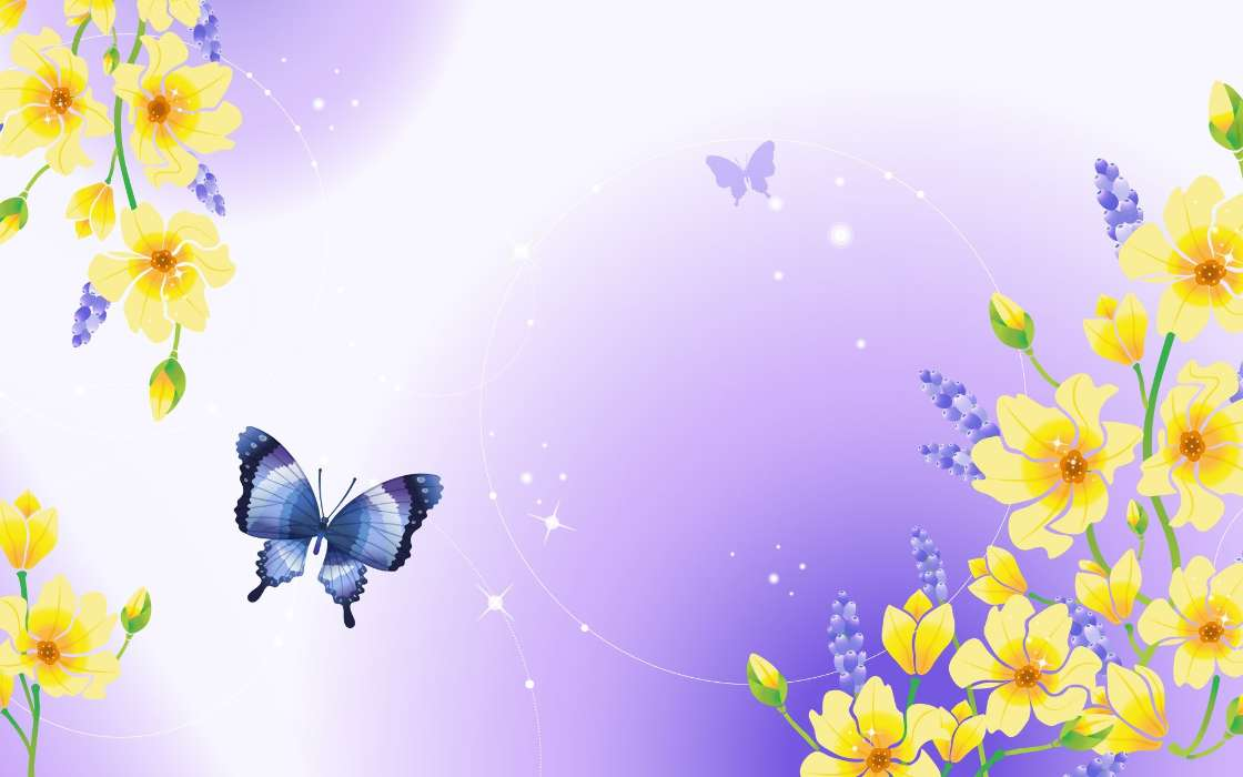 Butterflies, Backgrounds, Drawings