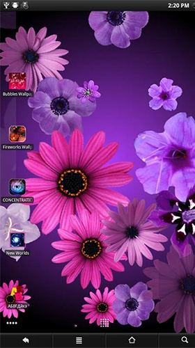 Gratis Blommor live wallpaper för Android på surfplattan arbetsbordet: Flowers by PanSoft.