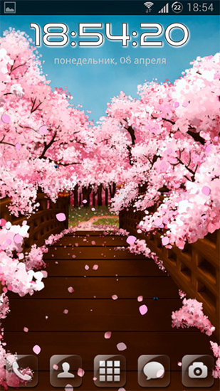 Sakura's bridge